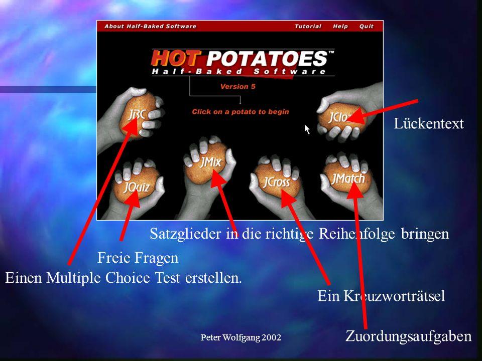 Peter Wolfgang 2002 Damit erstellen wir die Internetseiten.
