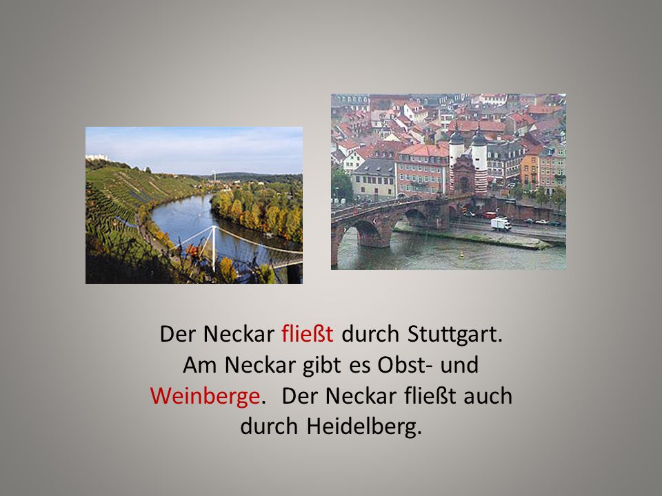 Der Neckar fließt durch Stuttgart. Am Neckar gibt es Obst- und Weinberge. Der Neckar fließt auch durch Heidelberg.