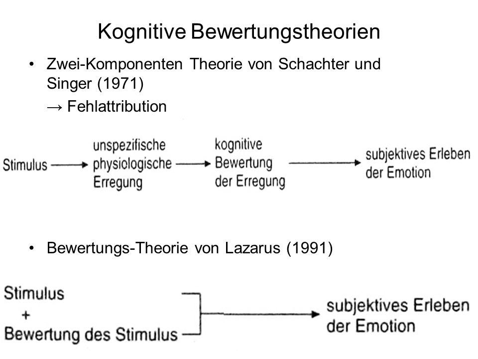 Kognitive Bewertungstheorien Zwei-Komponenten Theorie von Schachter und Singer (1971) Fehlattribution Bewertungs-Theorie von Lazarus (1991)