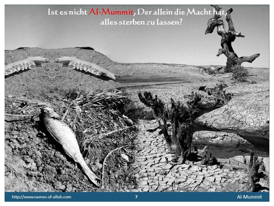 7 Al-Mummit 7 http://www.names-of-allah.com Ist es nicht Al-Mummit, Der allein die Macht hat, alles sterben zu lassen?