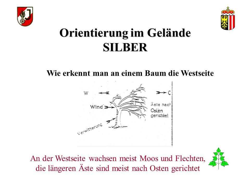 Orientierung im Gelände SILBER Zeige auf dem Baumstumpf die Himmelsrichtung: Die Verengung der Jahresringe zeigt nach Westen