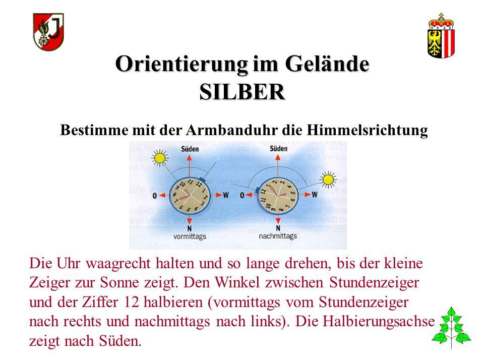 Orientierung im Gelände SILBER Bestimme mit der Armbanduhr die Himmelsrichtung Die Uhr waagrecht halten und so lange drehen, bis der kleine Zeiger zur Sonne zeigt.