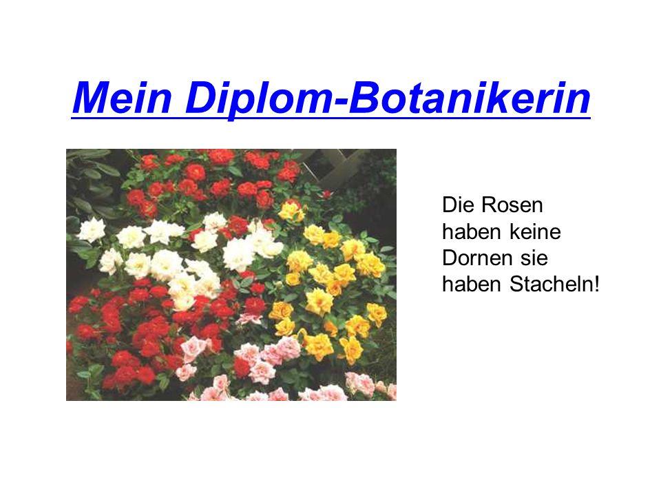 Mein Diplom-Botanikerin Die Rosen haben keine Dornen sie haben Stacheln!