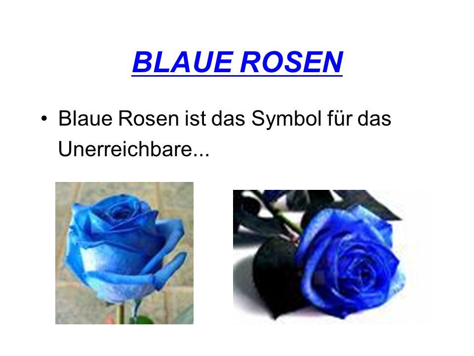 BLAUE ROSEN Blaue Rosen ist das Symbol für das Unerreichbare...