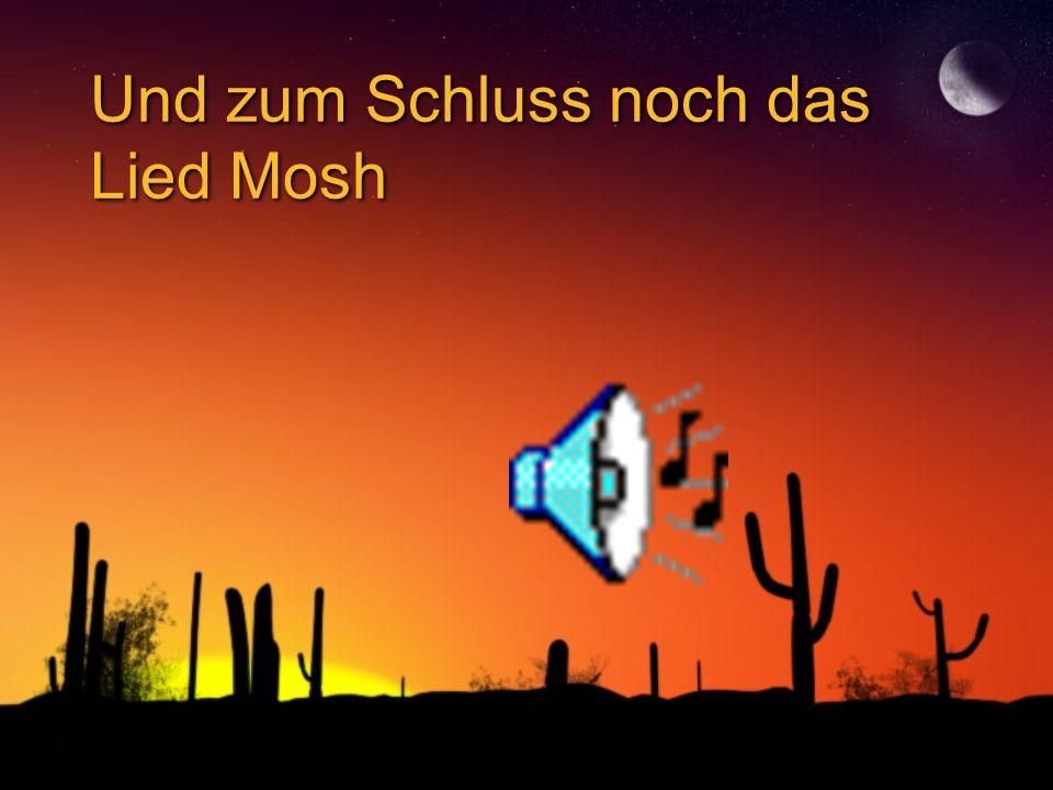 Mosh Mosh