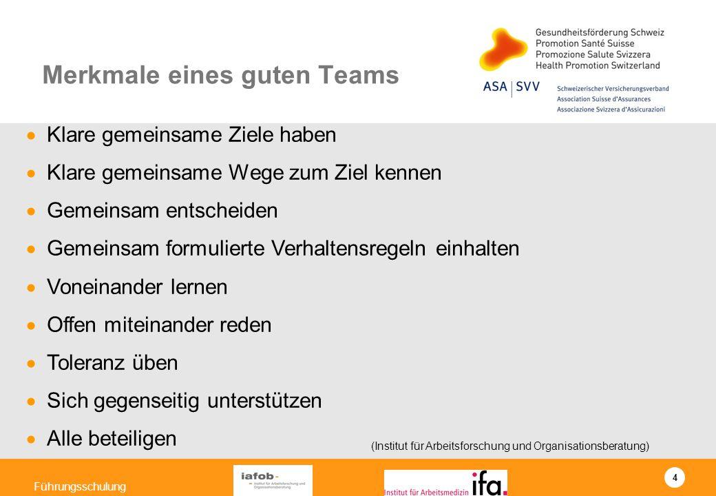 4 Führungsschulung Klare gemeinsame Ziele haben Klare gemeinsame Wege zum Ziel kennen Gemeinsam entscheiden Gemeinsam formulierte Verhaltensregeln ein