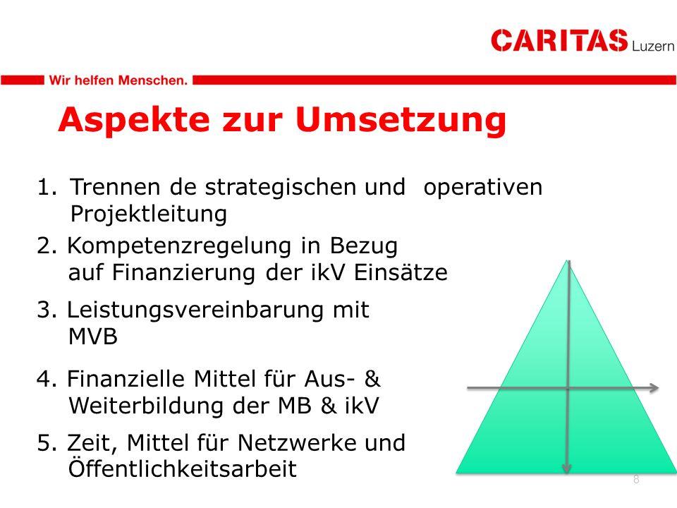 8 Aspekte zur Umsetzung 1.Trennen de strategischen und operativen Projektleitung 2. Kompetenzregelung in Bezug auf Finanzierung der ikV Einsätze 3. Le