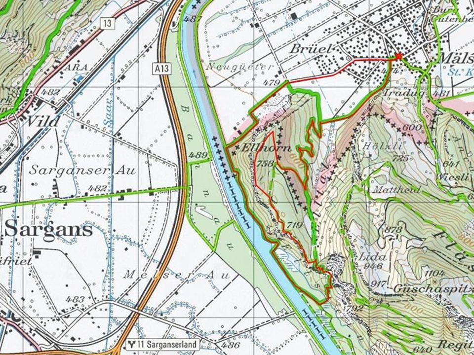 7.11.2013 Ausgangsort: Mäls bei Balzers Burg Gutenberg