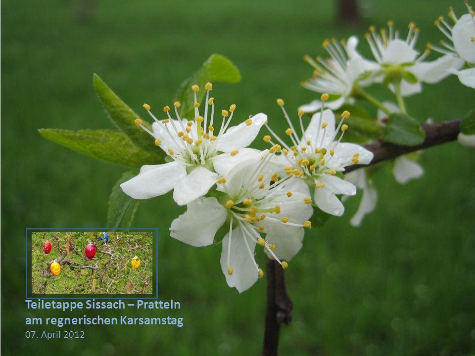 Teiletappe Sissach – Pratteln am regnerischen Karsamstag 07. April 2012