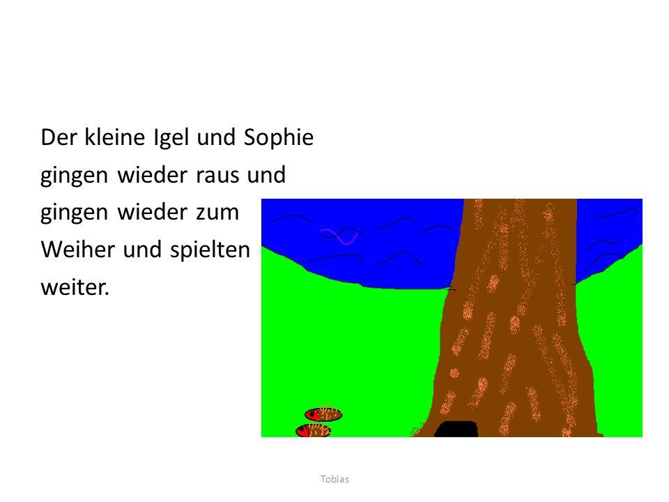 Der kleine Igel und Sophie gingen wieder raus und gingen wieder zum Weiher und spielten weiter. Tobias