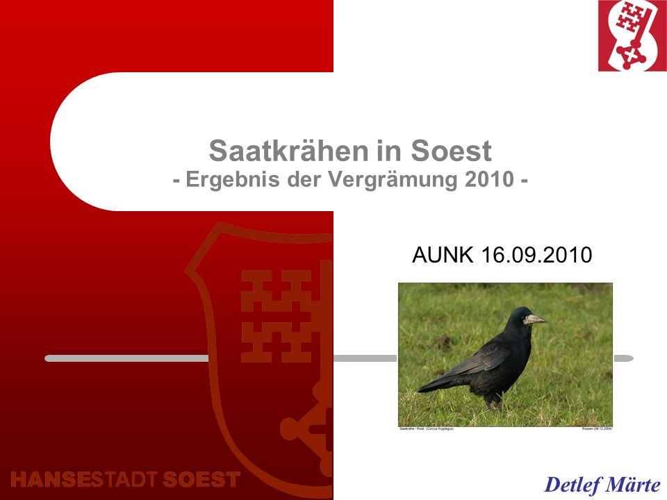 Saatkrähen in Soest - Ergebnis der Vergrämung 2010 - AUNK 16.09.2010 Detlef Märte
