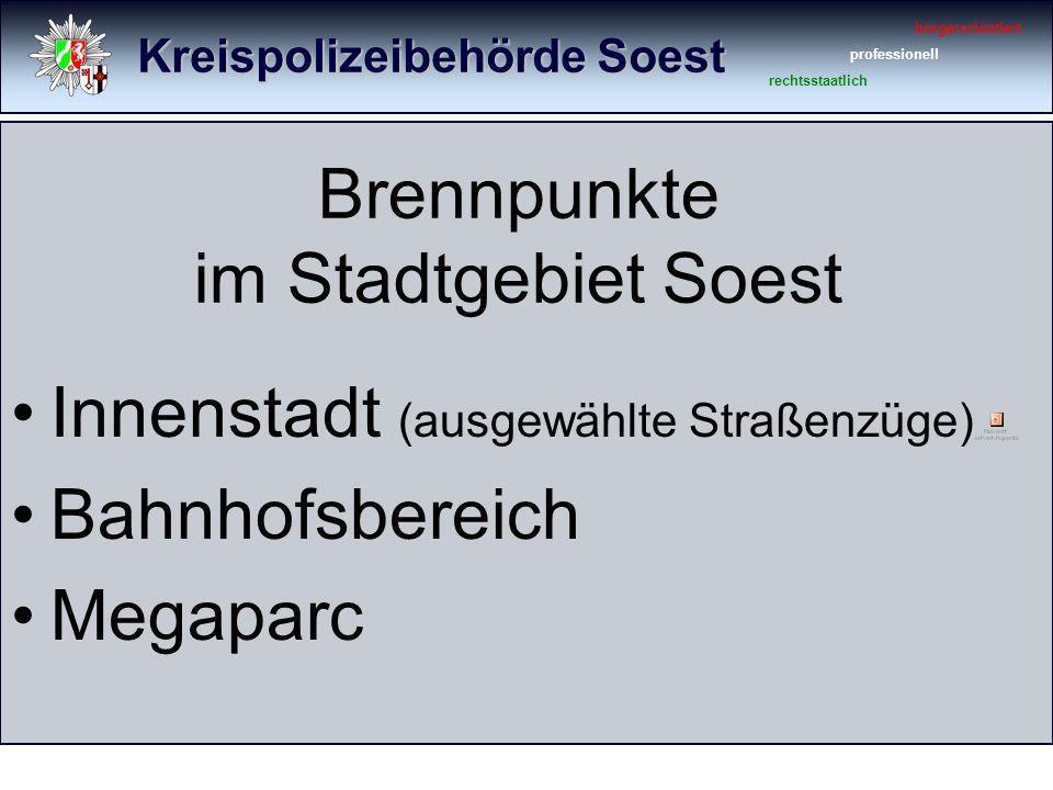 Kreispolizeibehörde Soest bürgerorientiert professionell rechtsstaatlich Körperverletzungsdelikte an den Brennpunkten 2010 (2009) KVGef.