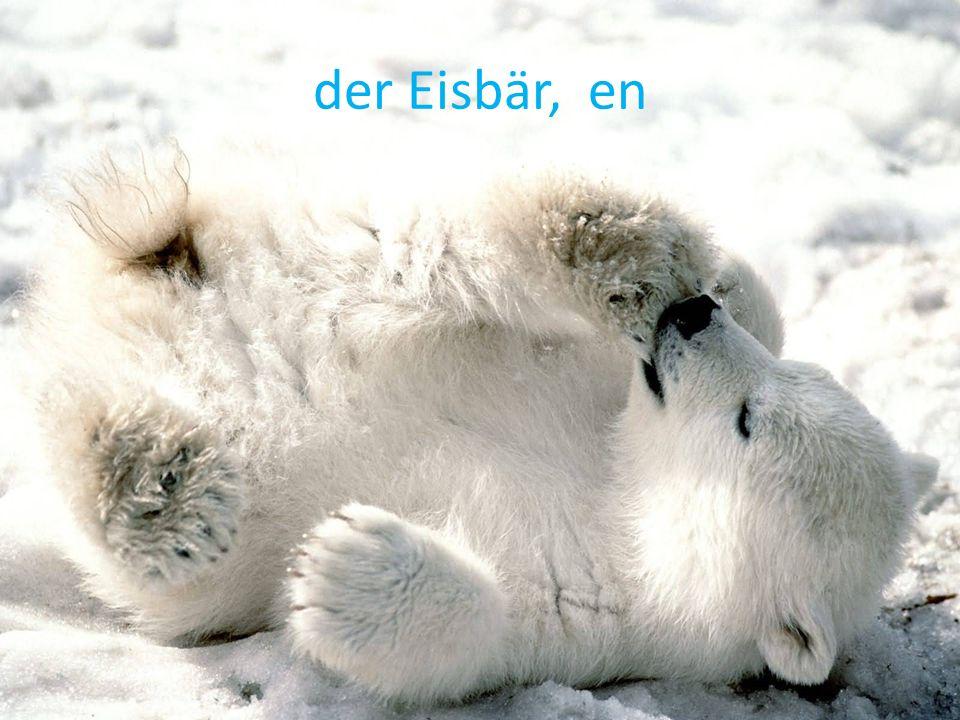 der Eisbär, en