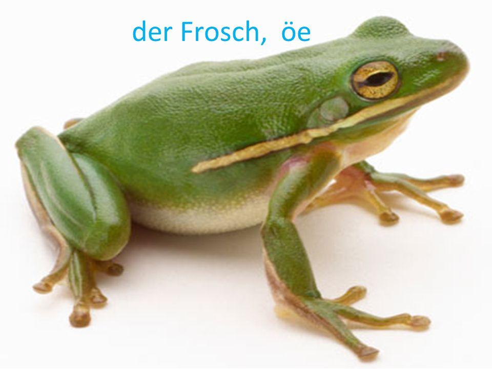 der Frosch, öe