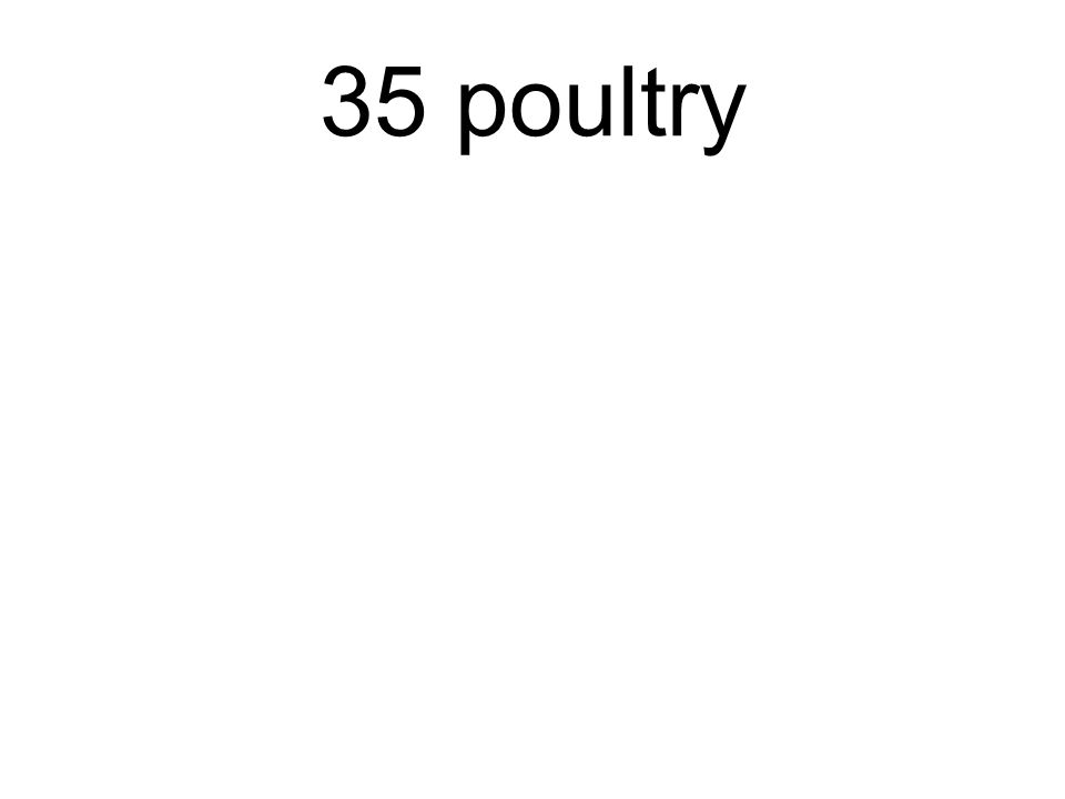 35 poultry