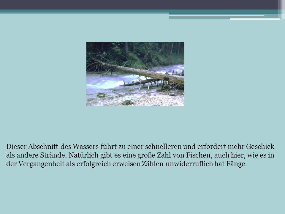 Dieser Abschnitt des Wassers führt zu einer schnelleren und erfordert mehr Geschick als andere Strände. Natürlich gibt es eine große Zahl von Fischen,