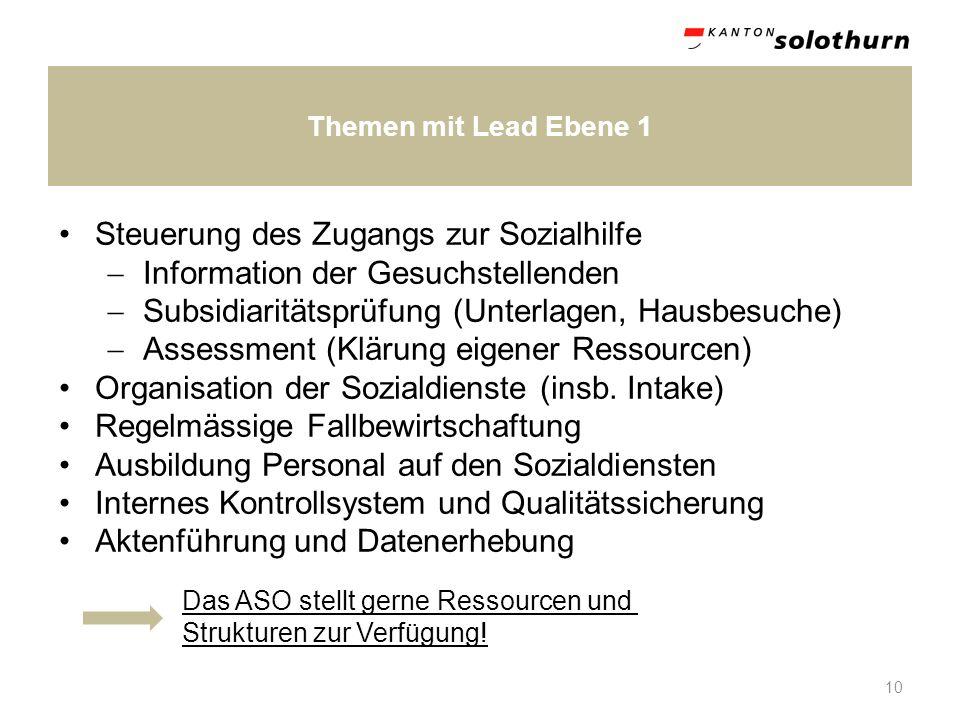 Themen mit Lead Ebene 1 10 Steuerung des Zugangs zur Sozialhilfe Information der Gesuchstellenden Subsidiaritätsprüfung (Unterlagen, Hausbesuche) Asse