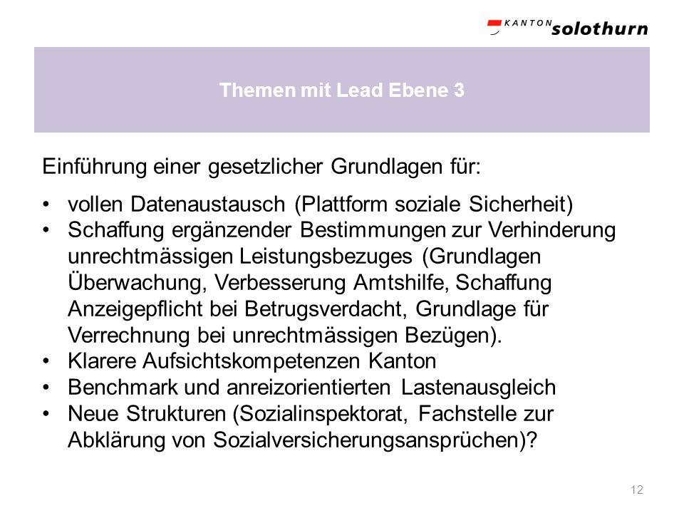 Themen mit Lead Ebene 3 12 Einführung einer gesetzlicher Grundlagen für: vollen Datenaustausch (Plattform soziale Sicherheit) Schaffung ergänzender Be