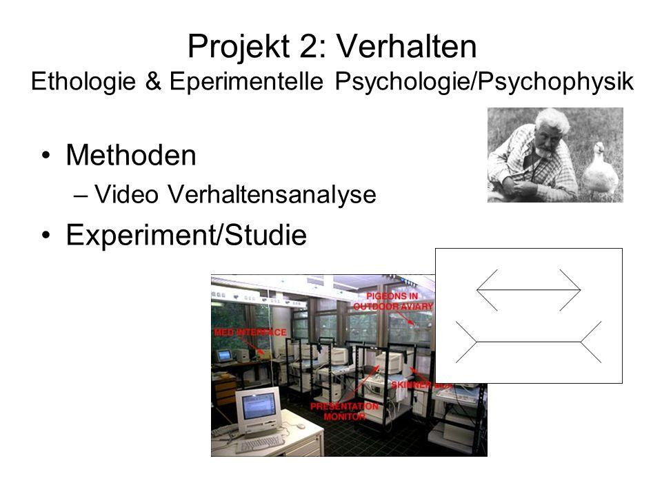 Projekt 2: Verhalten Ethologie & Eperimentelle Psychologie/Psychophysik Methoden –Video Verhaltensanalyse Experiment/Studie