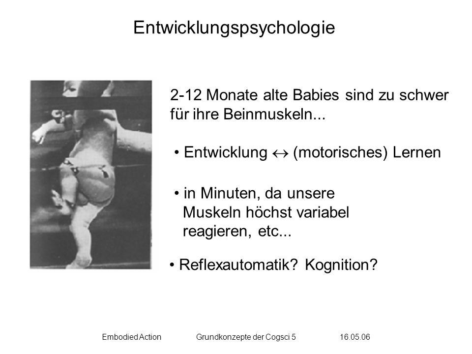 Embodied ActionGrundkonzepte der Cogsci 5 16.05.06 Kategorisierung & Generalisierung The Ramp & the importance of being nice to babies