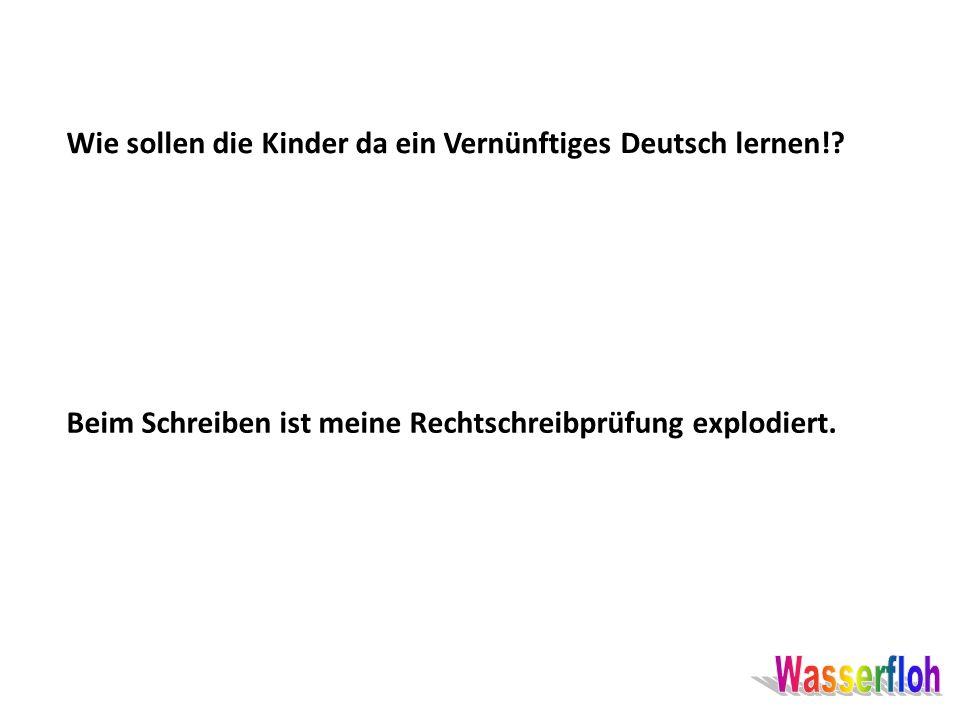 Wie sollen die Kinder da ein Vernünftiges Deutsch lernen!? Beim Schreiben ist meine Rechtschreibprüfung explodiert.