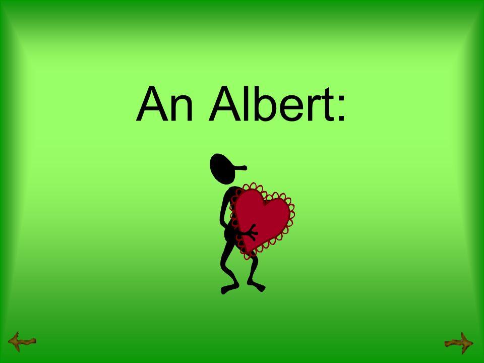 An Albert: