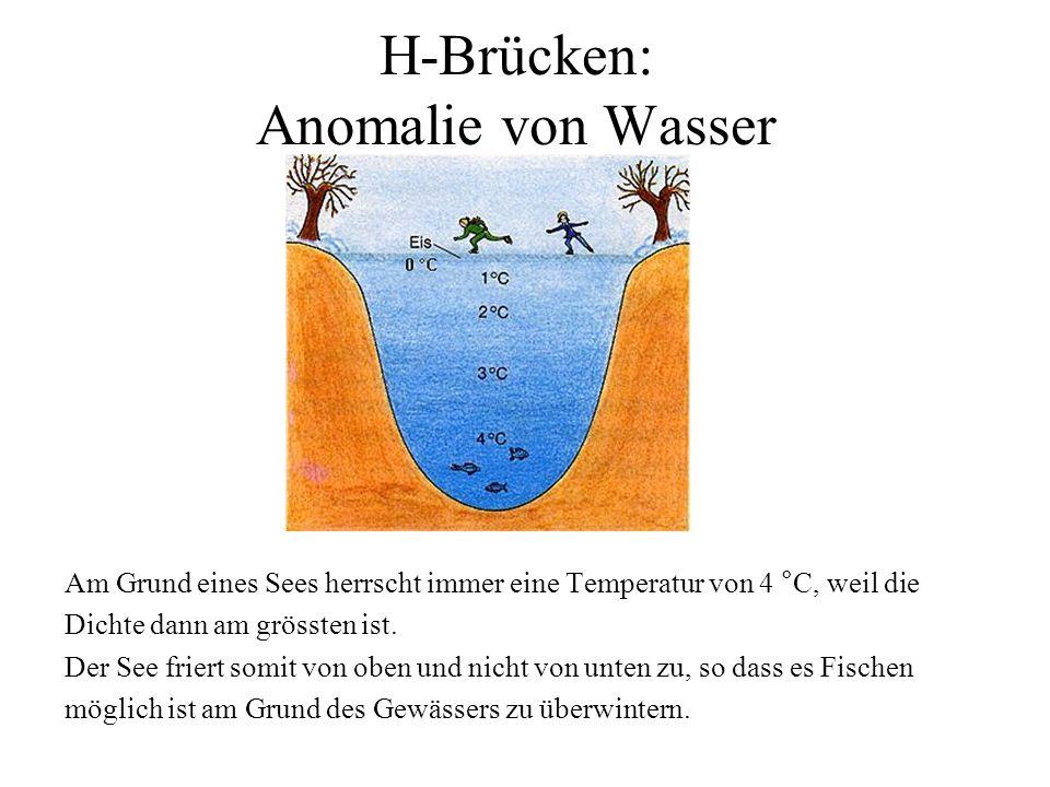 H-Brücken: Anomalie von Wasser Am Grund eines Sees herrscht immer eine Temperatur von 4 °C, weil die Dichte dann am grössten ist. Der See friert somit