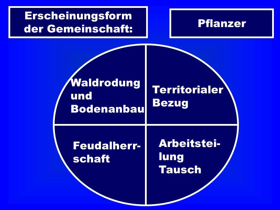 Erscheinungsform der Gemeinschaft: Pflanzer Waldrodung und Bodenanbau Territorialer Bezug Feudalherr- schaft Arbeitstei- lung Tausch