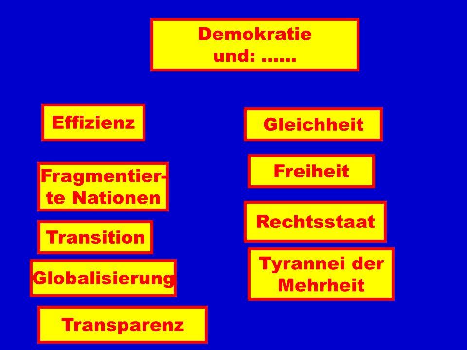 Demokratie und: …... Effizienz Fragmentier- te Nationen Transition Globalisierung Gleichheit Freiheit Rechtsstaat Tyrannei der Mehrheit Transparenz