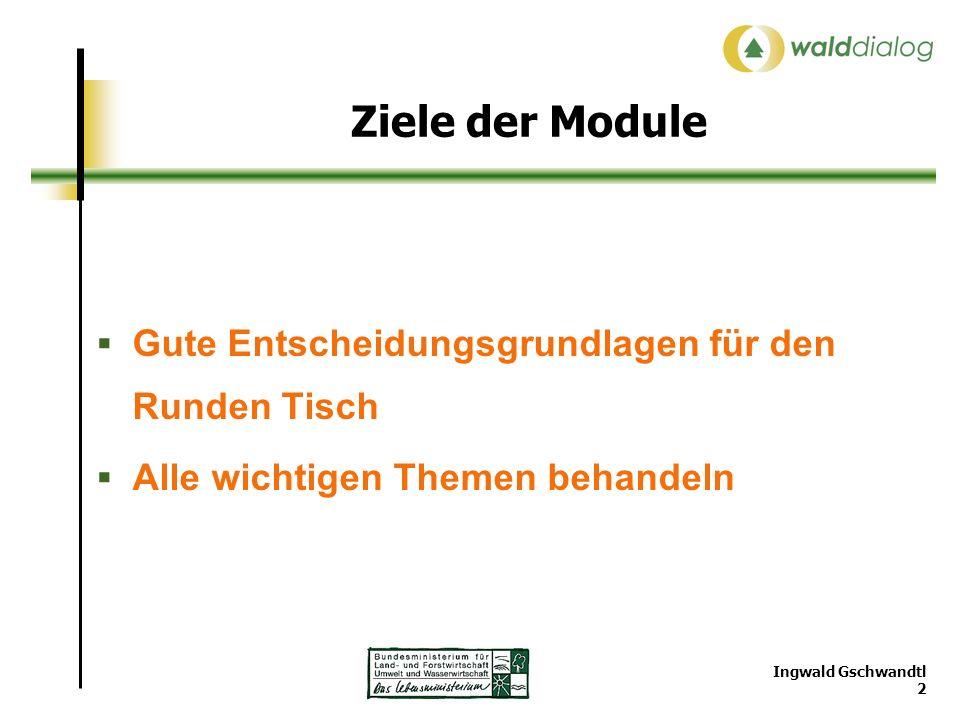 Ingwald Gschwandtl 2 Ziele der Module Gute Entscheidungsgrundlagen für den Runden Tisch Alle wichtigen Themen behandeln