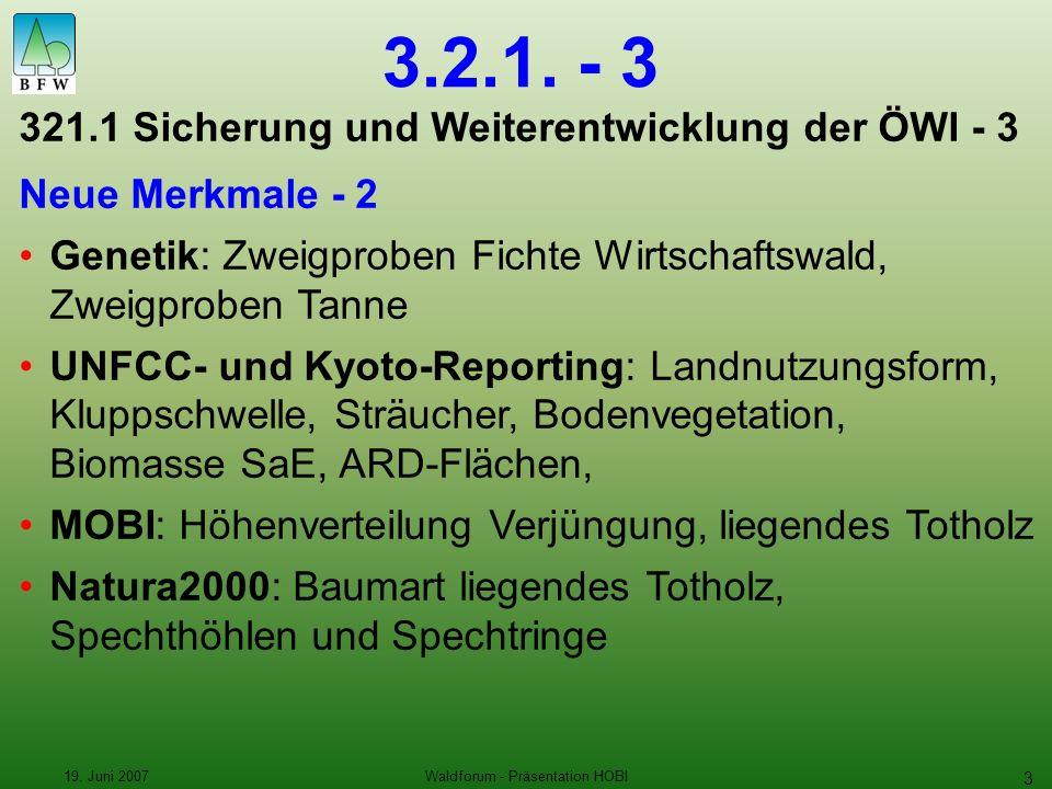 19. Juni 2007Waldforum - Präsentation HOBI 3 3.2.1.