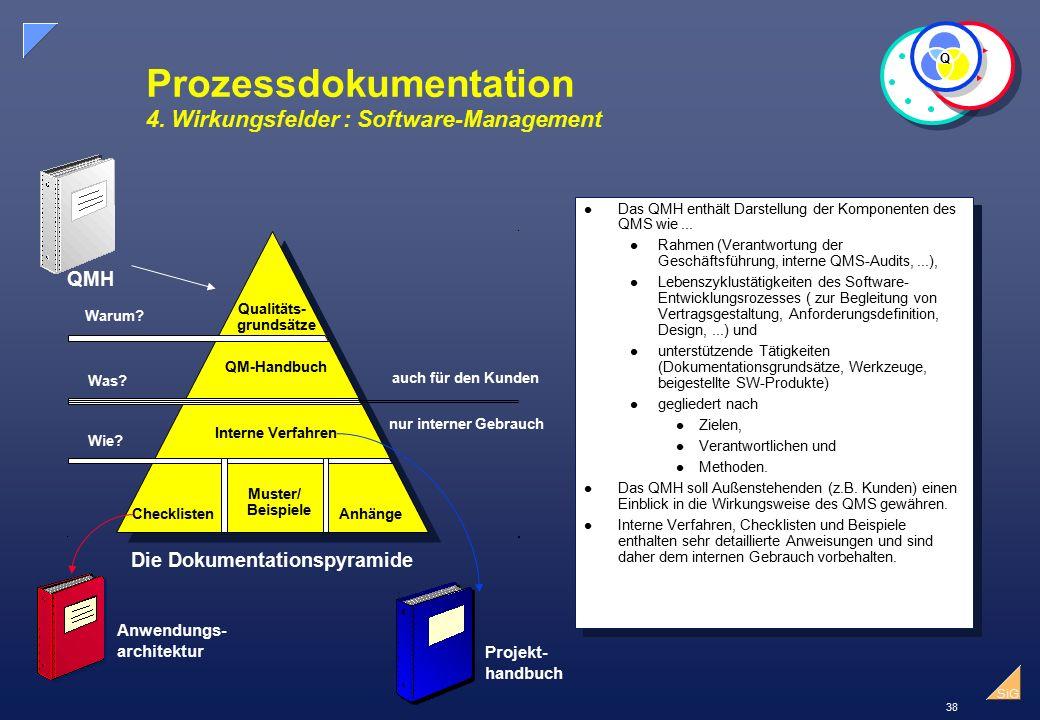 38 SiG Prozessdokumentation 4.