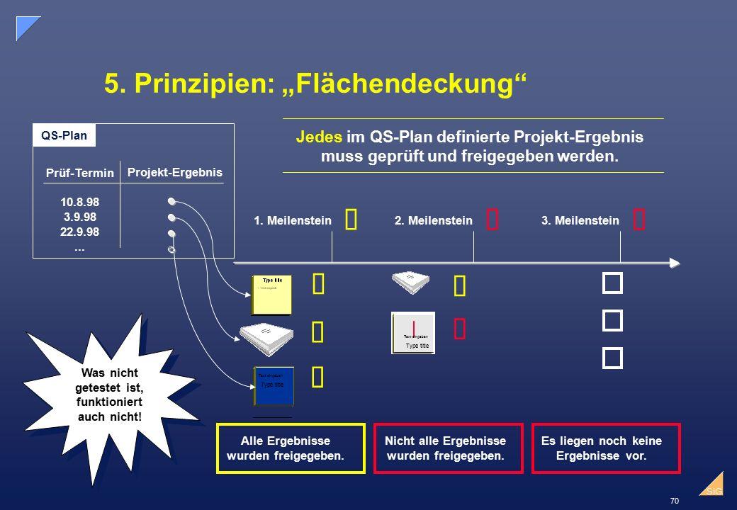 """70 SiG 5.Prinzipien: """"Flächendeckung 1. Meilenstein2."""