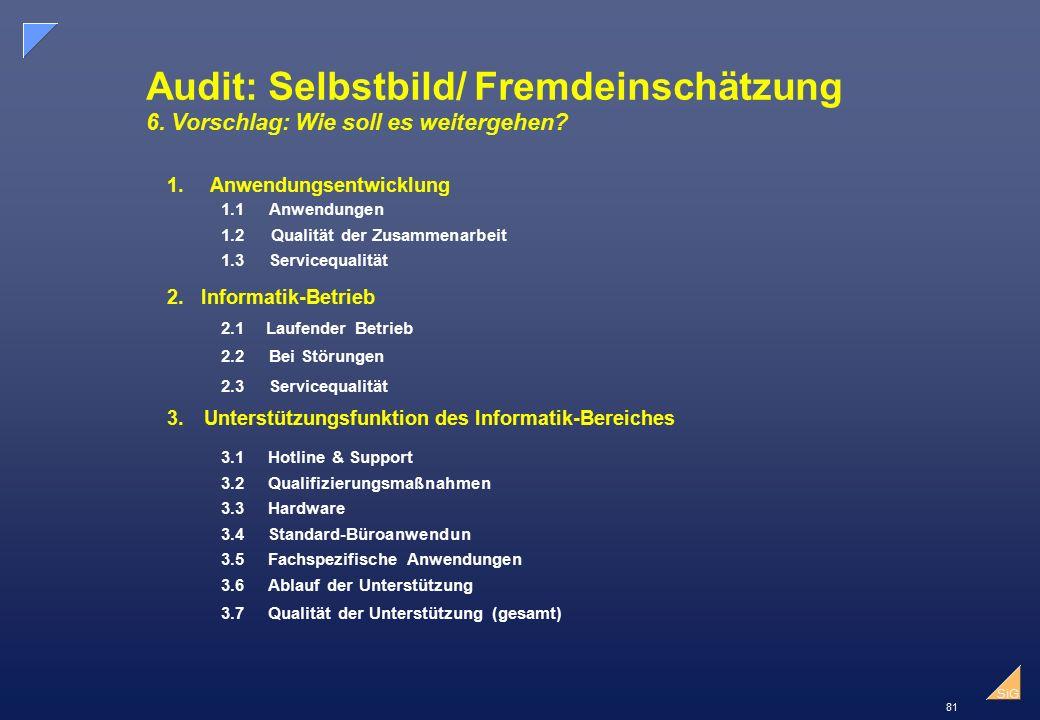 81 SiG Audit: Selbstbild/ Fremdeinschätzung 6.Vorschlag: Wie soll es weitergehen.