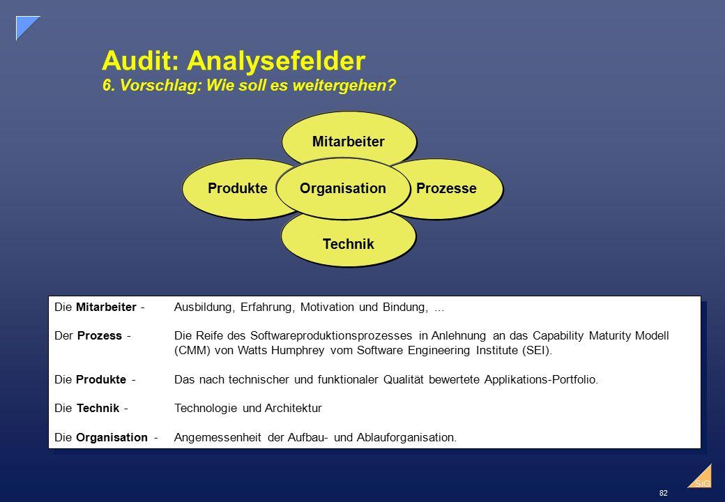 82 SiG Audit: Analysefelder 6.Vorschlag: Wie soll es weitergehen.