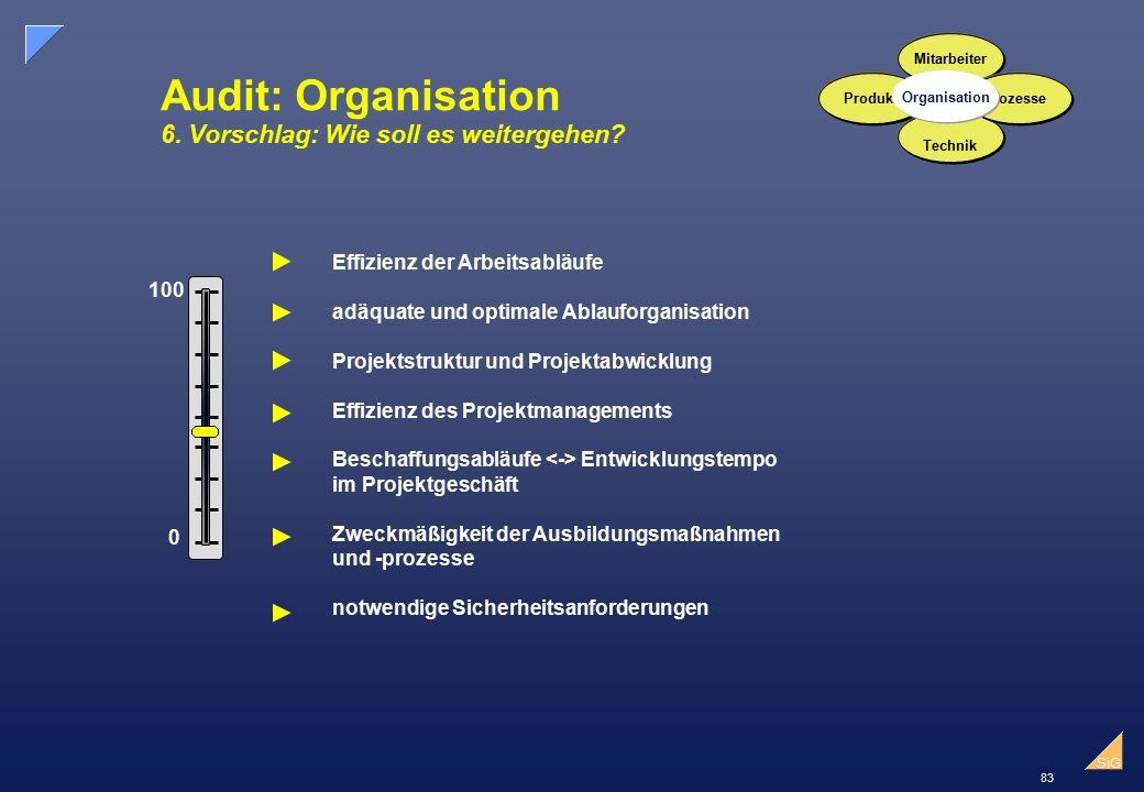 83 SiG Audit: Organisation 6.Vorschlag: Wie soll es weitergehen.