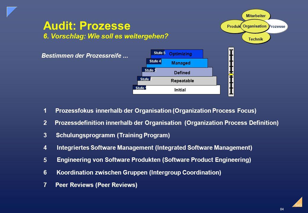 84 SiG Audit: Prozesse 6.Vorschlag: Wie soll es weitergehen.