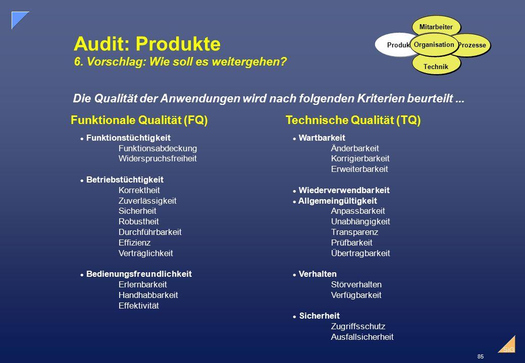85 SiG Audit: Produkte 6.Vorschlag: Wie soll es weitergehen.
