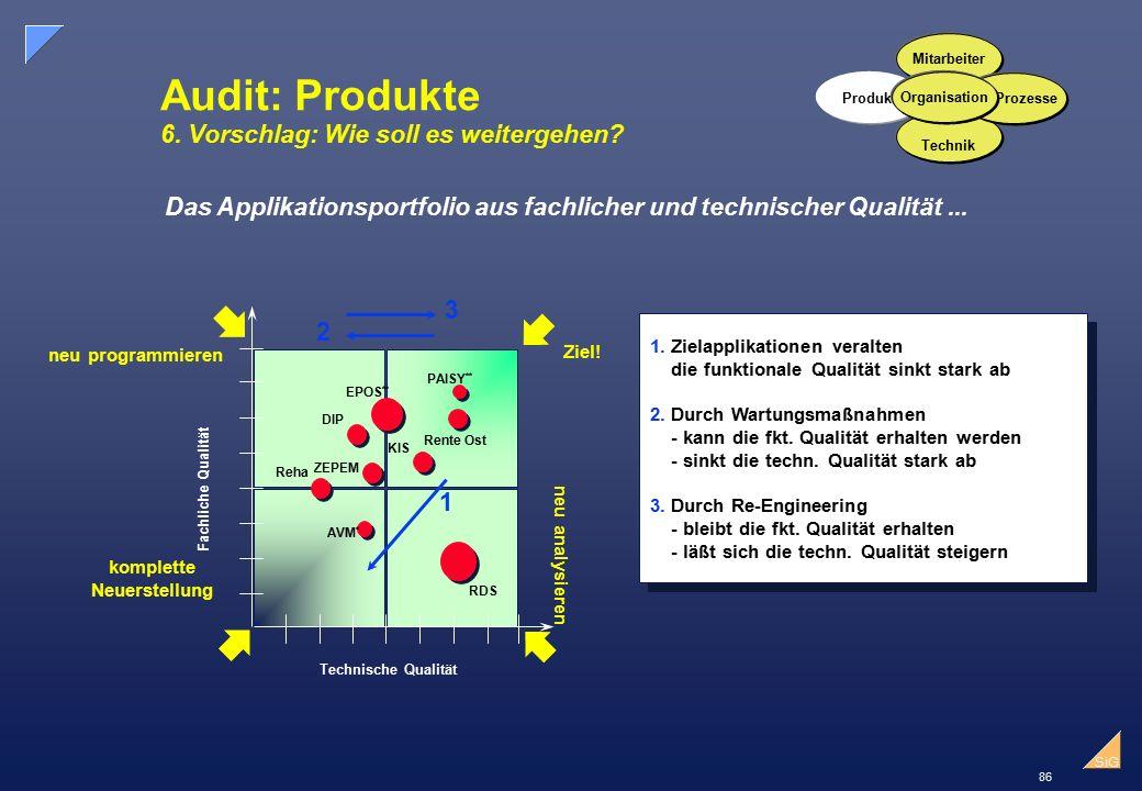 86 SiG Audit: Produkte 6.Vorschlag: Wie soll es weitergehen.