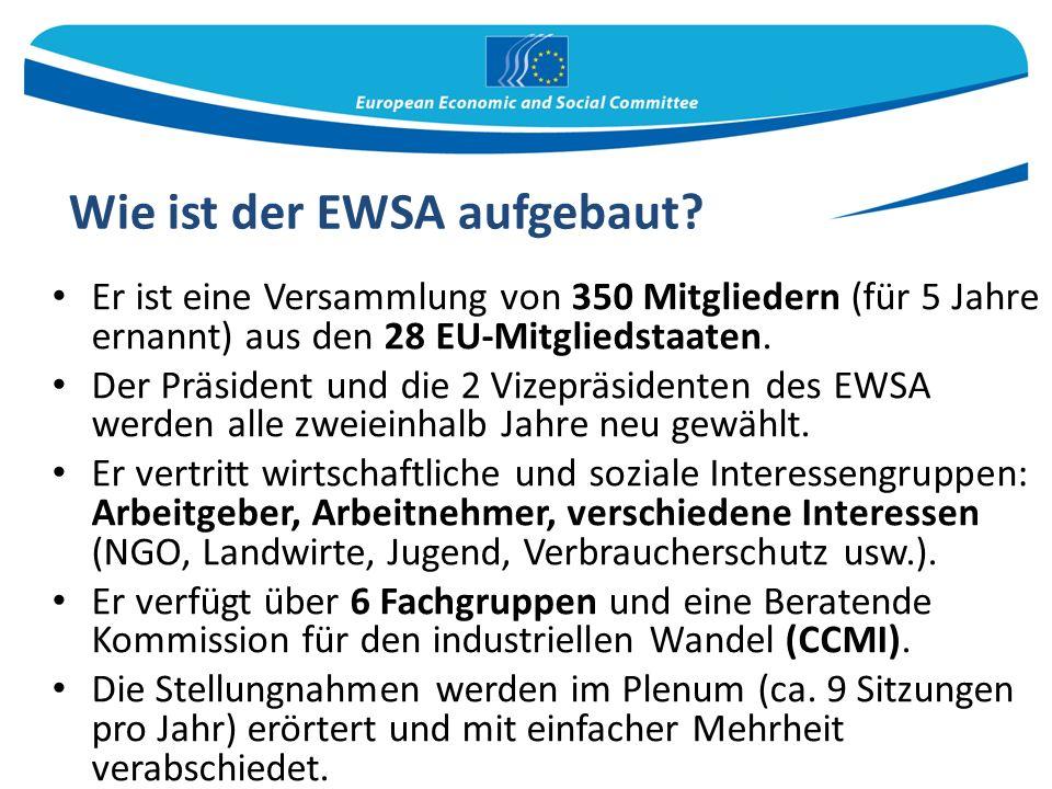 Wie ist der EWSA aufgebaut.
