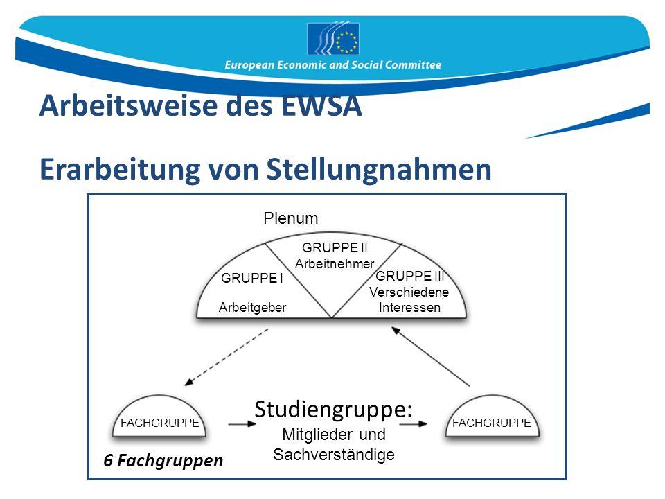 Arbeitsweise des EWSA Erarbeitung von Stellungnahmen 6 Fachgruppen Plenum GRUPPE II Arbeitnehmer GRUPPE I Arbeitgeber GRUPPE III Verschiedene Interessen FACHGRUPPE Studiengruppe: Mitglieder und Sachverständige