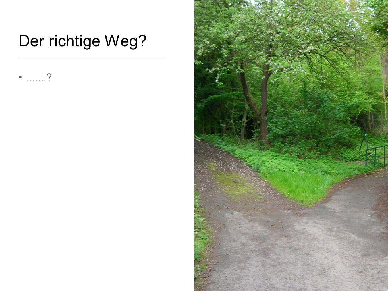 Der richtige Weg?.......?