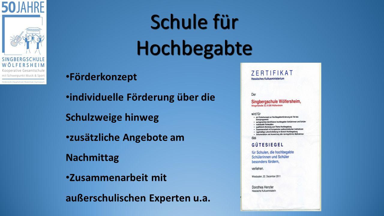Schule für Hochbegabte Förderkonzept individuelle Förderung über die Schulzweige hinweg zusätzliche Angebote am Nachmittag Zusammenarbeit mit außerschulischen Experten u.a.