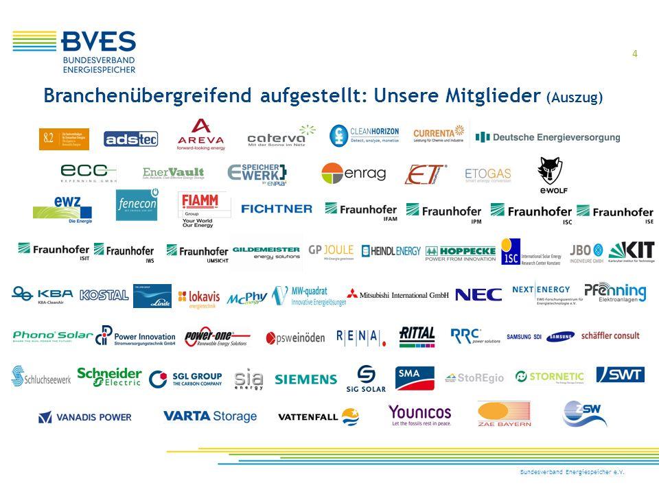 5 Bundesverband Energiespeicher e.V. Weltweit gut aufgestellt: Unsere Kooperationspartner