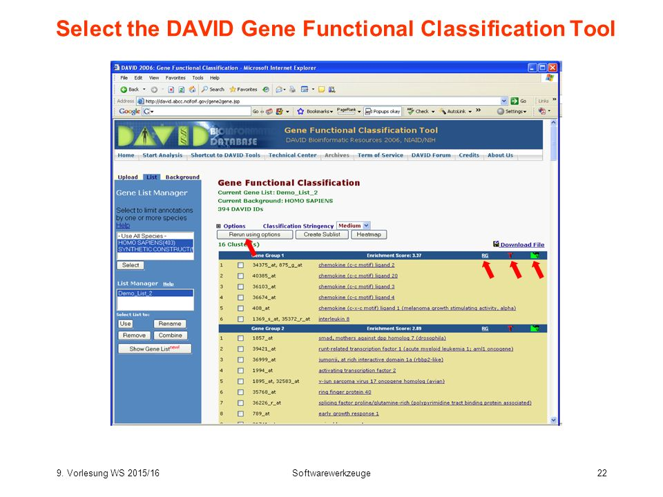 9. Vorlesung WS 2015/16Softwarewerkzeuge22 Select the DAVID Gene Functional Classification Tool