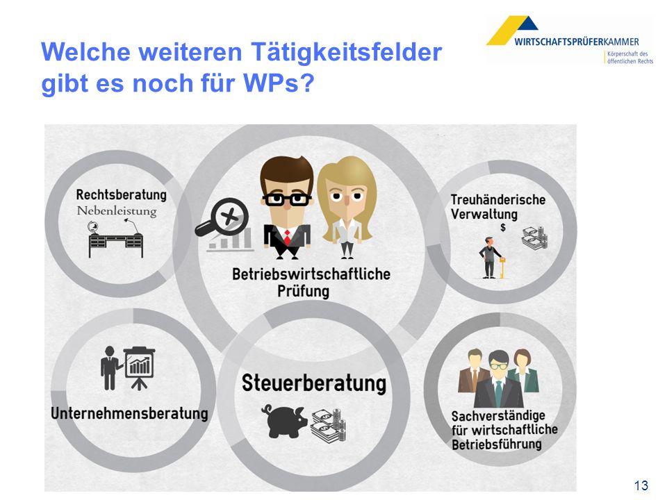 13 Welche weiteren Tätigkeitsfelder gibt es noch für WPs?
