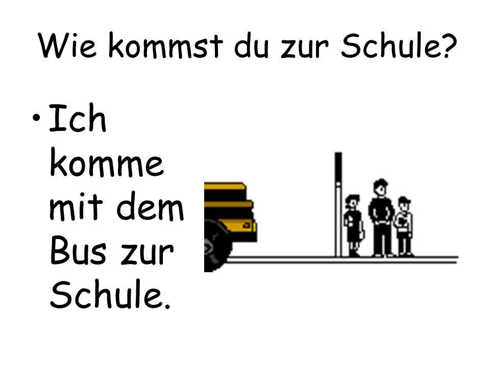 Wie kommst du zur Schule? Ich komme mit dem Bus zur Schule.