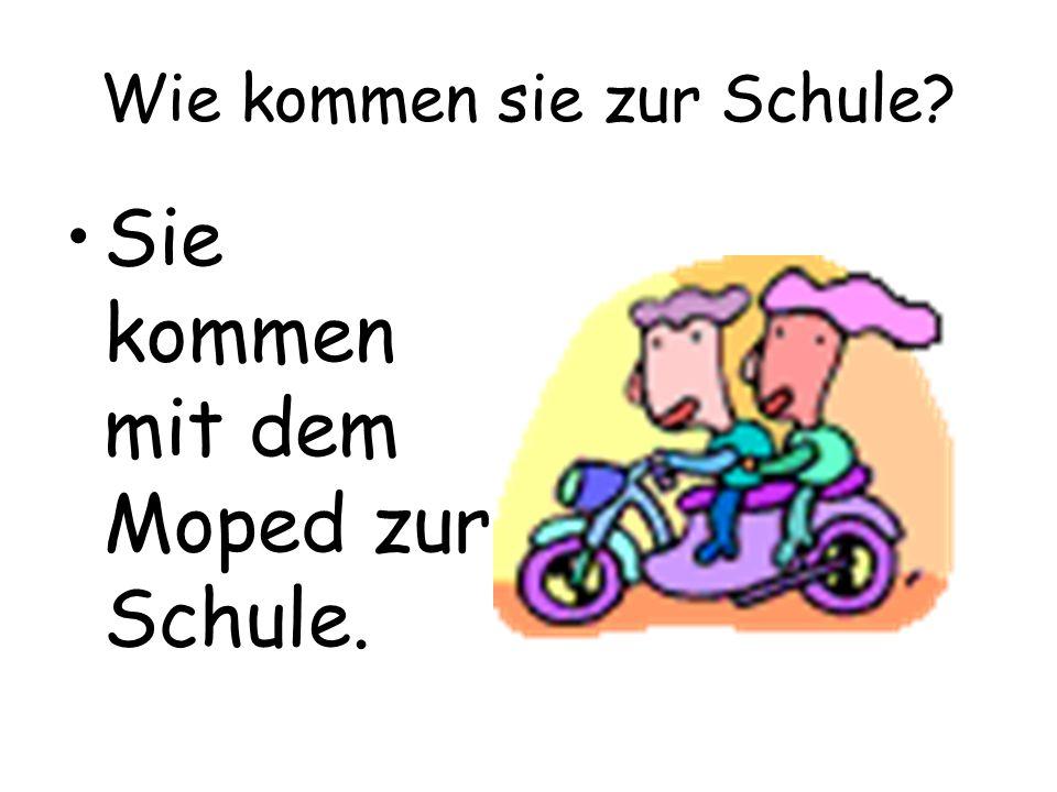 Wie kommen sie zur Schule? Sie kommen mit dem Moped zur Schule.