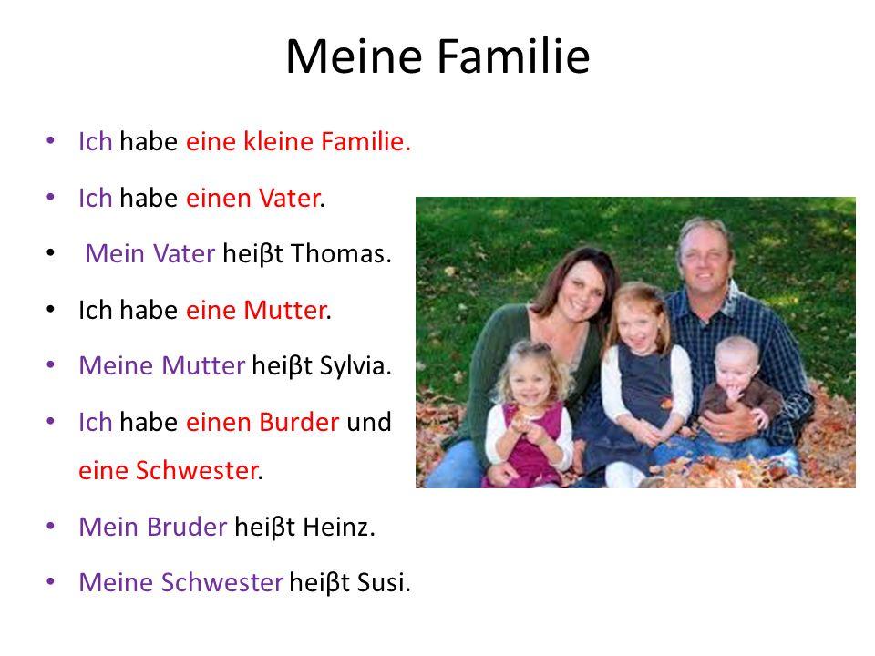 Meine Familie Ich habe eine kleine Familie. Ich habe einen Vater. Mein Vater heiβt Thomas. Ich habe eine Mutter. Meine Mutter heiβt Sylvia. Ich habe e