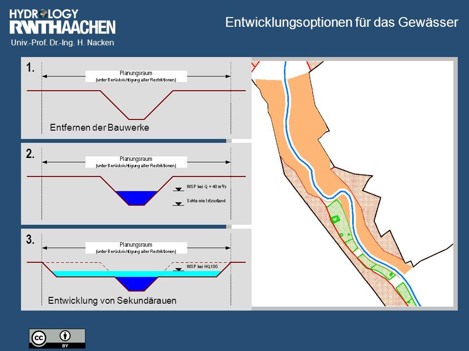 Univ.-Prof. Dr.-Ing. H. Nacken 2. 1. Entfernen der Bauwerke 3. Entwicklung von Sekundärauen Entwicklungsoptionen für das Gewässer